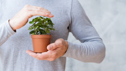 Ecology care movement. Environmental issues concept. Man covering houseplant.
