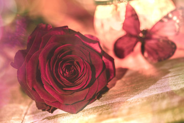 Einzelne Rose, Dekoration mit Schmetterling -Bokeh -  Single rose, decoration with butterfly