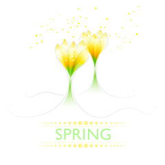Background with pastel spring flowers