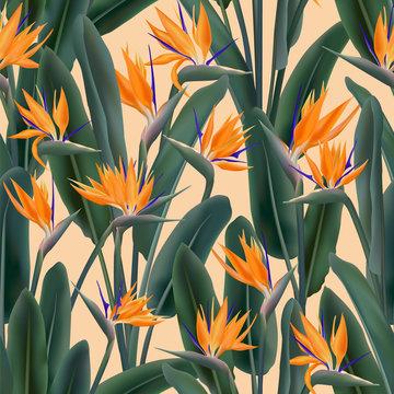Crane flower pattern. Strelitzia floral wallpaper.