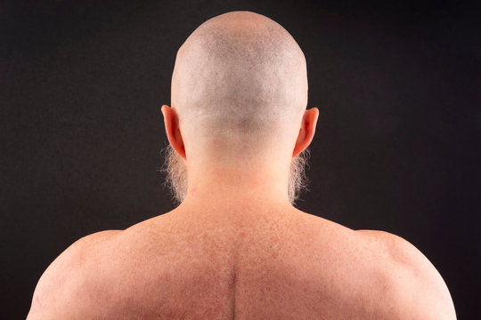 portrait of bald man with beard from back