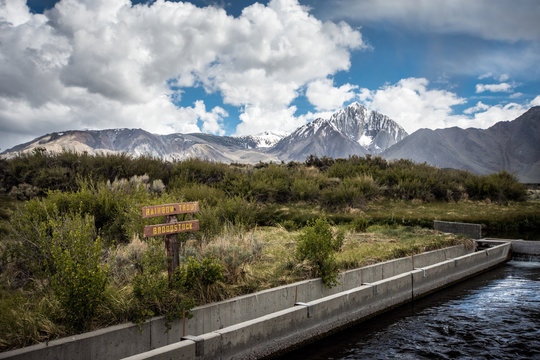 Hot Creek Fish Hatchery in Mammoth Lakes breeds Rainbow Trout, which are stocked in nearby lakes for fishing