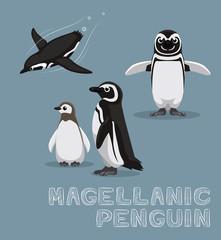 Magellanic Penguin Cartoon Vector Illustration