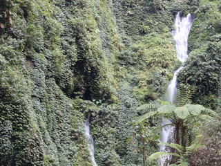 Madakaripura  Waterfall in Bromo Tengger Semeru National Park