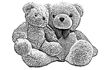teddy bear,sketch teddy bear,drawing teddy bear isolated on white background