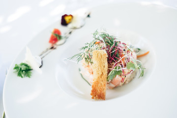 Fresh and tasty gourmet dish for star-studded restaurants, festive meals and luxurious receptions