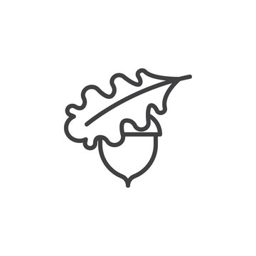 Acorn and Oak Leaf line icon. linear style sign for mobile concept and web design. Oak acorn outline vector icon. Symbol, logo illustration. Pixel perfect vector graphics