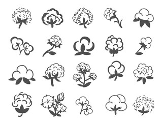 Natural organic cotton, pure cotton vector labels set. Hand drawn, typographic style icons or badges, stickers, signs. Isolated on white background