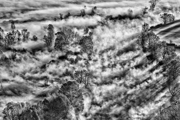 Una mattina con nebbia sul fiume, immagine in bianco e nero, Italia