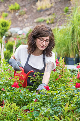 Female Gardener between Roses
