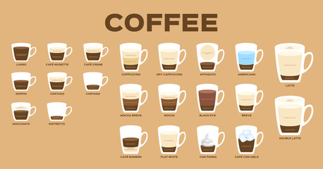 Types of coffee vector / coffee menu infographic version 01