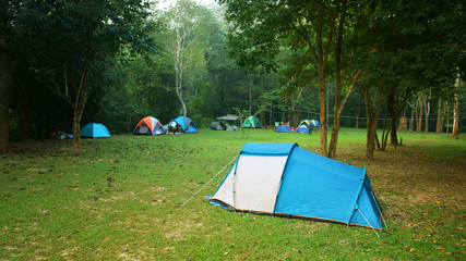 nature landscape blue camping tent with tree on green grass meadow in jungle or forest for trekking picnic on holiday relax and vacation travel on autumn winter or summer with fog at Ban Krang Camp