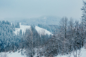 Beautiful winter mountain landscape with snow forests in the misty distant backdrop. Picturesque and peaceful wintry scene European resort location. Cloudy day