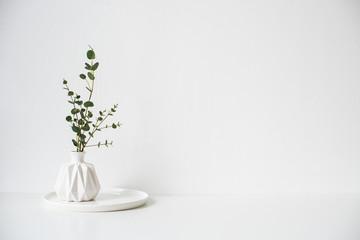 Obraz Eucalyptus branches in white ceramic vase on empty wall background - fototapety do salonu