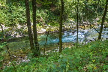 Gole del Vintgar, Slovenia