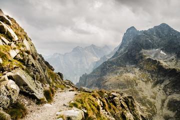 Fototapeta Ścieżka w górach szlak turystyczny nad urwiskiem w Tatrach w Polsce