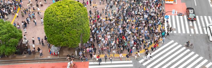 Pedestrians crosswalk at Shibuya district in Tokyo, Japan. Shibuya Crossing is one of the busiest crosswalks in the world.