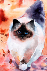 a cat in the leaves. Siamese fluffy. watercolor. autumn
