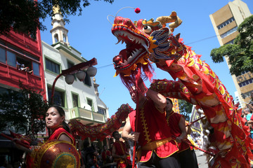 Fire dragon dance is performed during the Chinese Lunar New Year celebrations in Sao Paulo