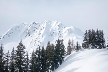 Rettenstein Berg in den österreichischen Alpen