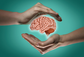 A human brain between two palms of a woman on blue and green background. Brain protection and intellectual rights concept.