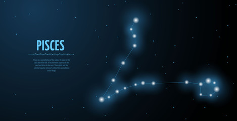Pisces zodiac constellation vector sign with silhouette. Poster design with place for text