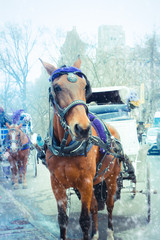 Horse drawn carriage on a snowy winter day outside Central Park New York City