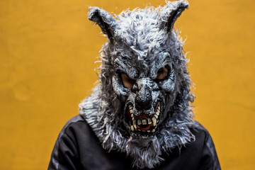 Person with wolf mask photograph