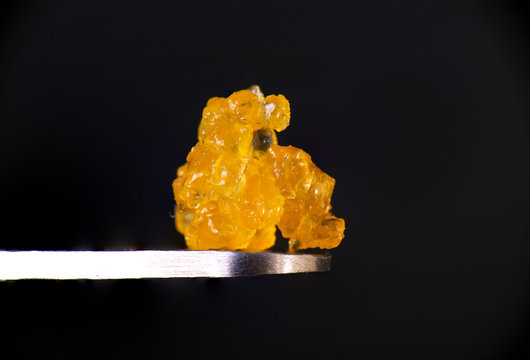 Macro detail of cannabis concentrate HTFSE extracted from medical marijuana