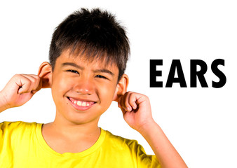 English language learning card with portrait of 8 years old child touching pulling his ear isolated on white background as part of school cards set of body and face parts
