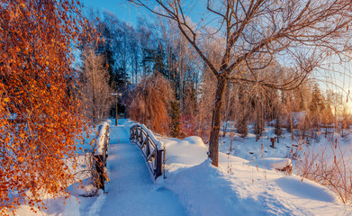 Wooden bridge in the snowy winter park