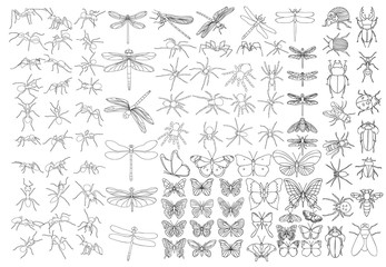 set of sketches of insects, isolated, vector