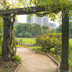 Nature and garden green background with detail of traditional Japanese garden with green and yellow trees and pergola structures in Hibiya park in Tokyo, Japan in November.