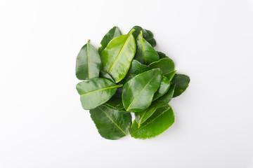 Kaffir lime leaf (Daun limau purut) isolated on white background