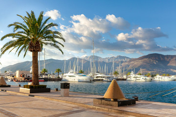 Mediterranean town with palm trees and yachts