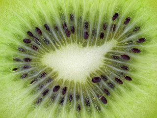 close up of sliced green kiwi fruit, natural background