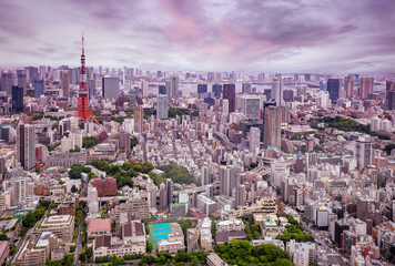 aerial view of Tokyo city at dusk.