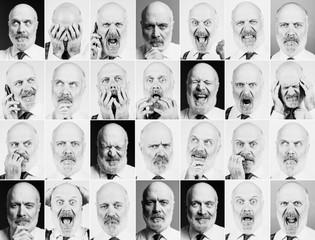 Mature businessman portraits collection