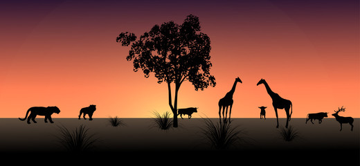 Vector, the shadow of an African animal in the evening.