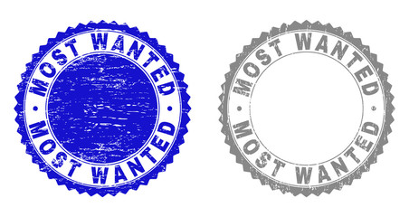 Grunge MOST WANTED stamp seals isolated on a white background. Rosette seals with distress texture in blue and grey colors. Vector rubber stamp imprint of MOST WANTED caption inside round rosette.