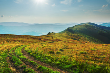 Summer landscapes in the Ukrainian Carpathian Mountains with beautiful mountain valleys and views of the ridge.