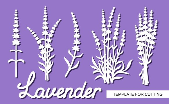 Set of lavender flowers. Silhouettes of twigs, bushes, inflorescences and the word Lavender. White objects on a purple background. Template for laser cutting, wood carving, paper cut or printing.
