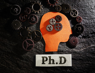 PhD and gears
