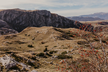 Wonderful view to mountains in the national park Durmitor in Montenegro, Balkans. Europe. Beauty world. - Image.