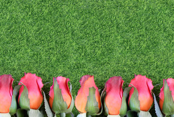 Red silk roses and artificial green grass form a bottom border. Good for the running of the thoroughbred race called the Kentucky Derby. Copy space
