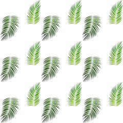 Palm Trees on White Background. Seamless pattern. Vector Illustration