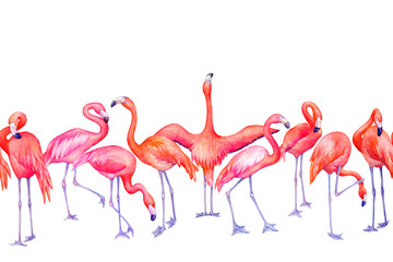 Seamless pattern with exotic tropical pink flamingo bird (flame-colored) in different poses. Hand drawn watercolor painting illustration isolated on white background.