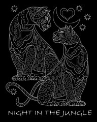 Fantasy drawing of couple beautiful leopards. Poster on a black background with a lettering night in the jungle. Modern pattern for t-shirts print and embroidery. Vector image.