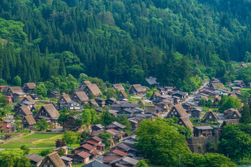 Gassho-zukuri-concentrated areas are in Shirakawago and Gokayama (located in Gifu Prefecture) 岐阜県白川郷の合掌造り