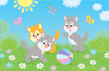 Funny little kittens playing with a colorful ball and butterflies on green grass among flowers on a sunny day, vector illustration in a cartoon style